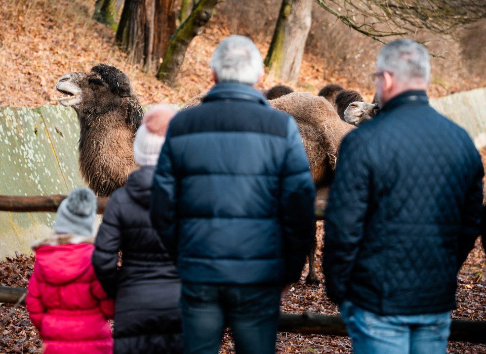 Návštěvníci v zoo