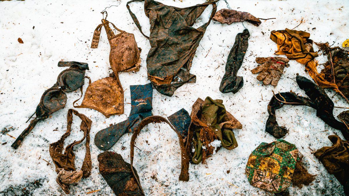 Sbírka předmětů z čapího hnízda